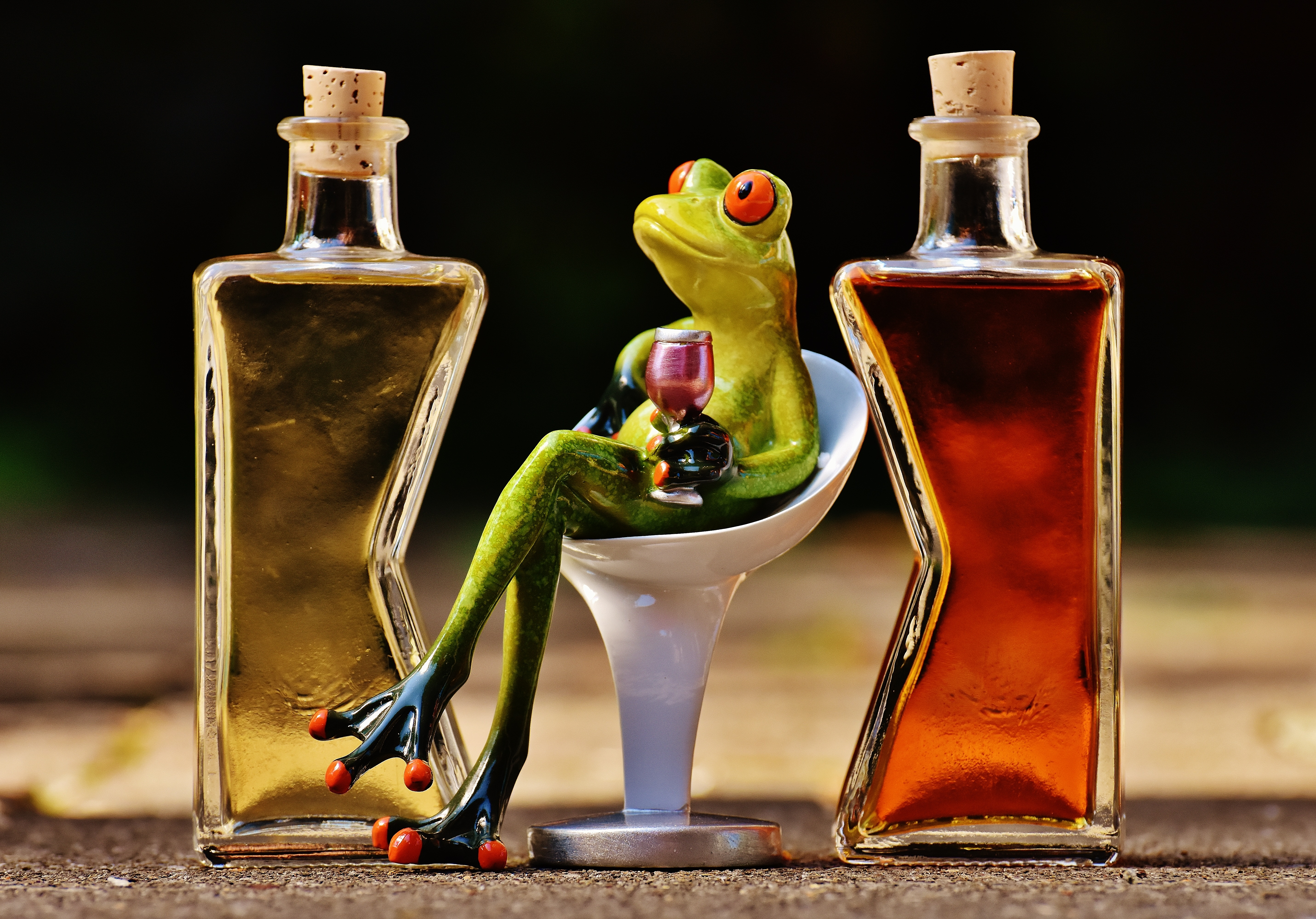 frogs-1650658